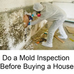 Do a Mold Inspection Before Buying a House-local-records-office