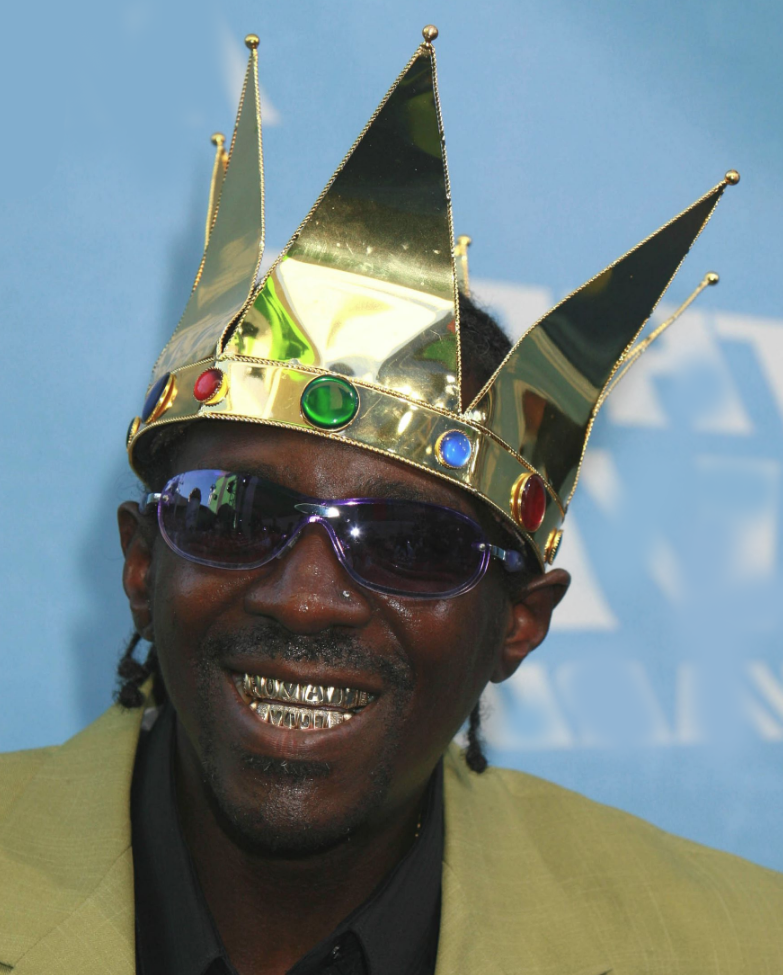 Flavor Flav beaten up in Las Vegas casino (VIDEO)