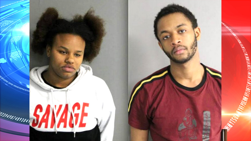 Couple tried to rob people on CTA green line train with replica gun