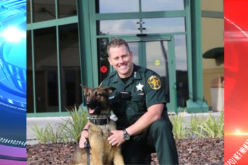 Lakeland Sheriff kills his own police K-9 after animal attacked officer