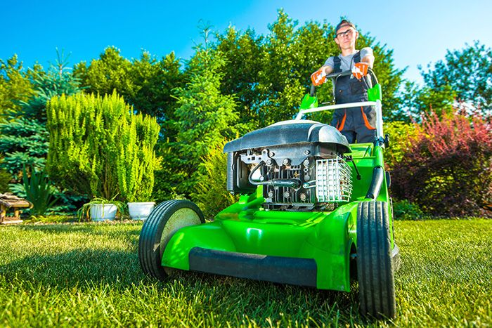 DIY or hire a landscaping professional when seeding or sodding a new lawn